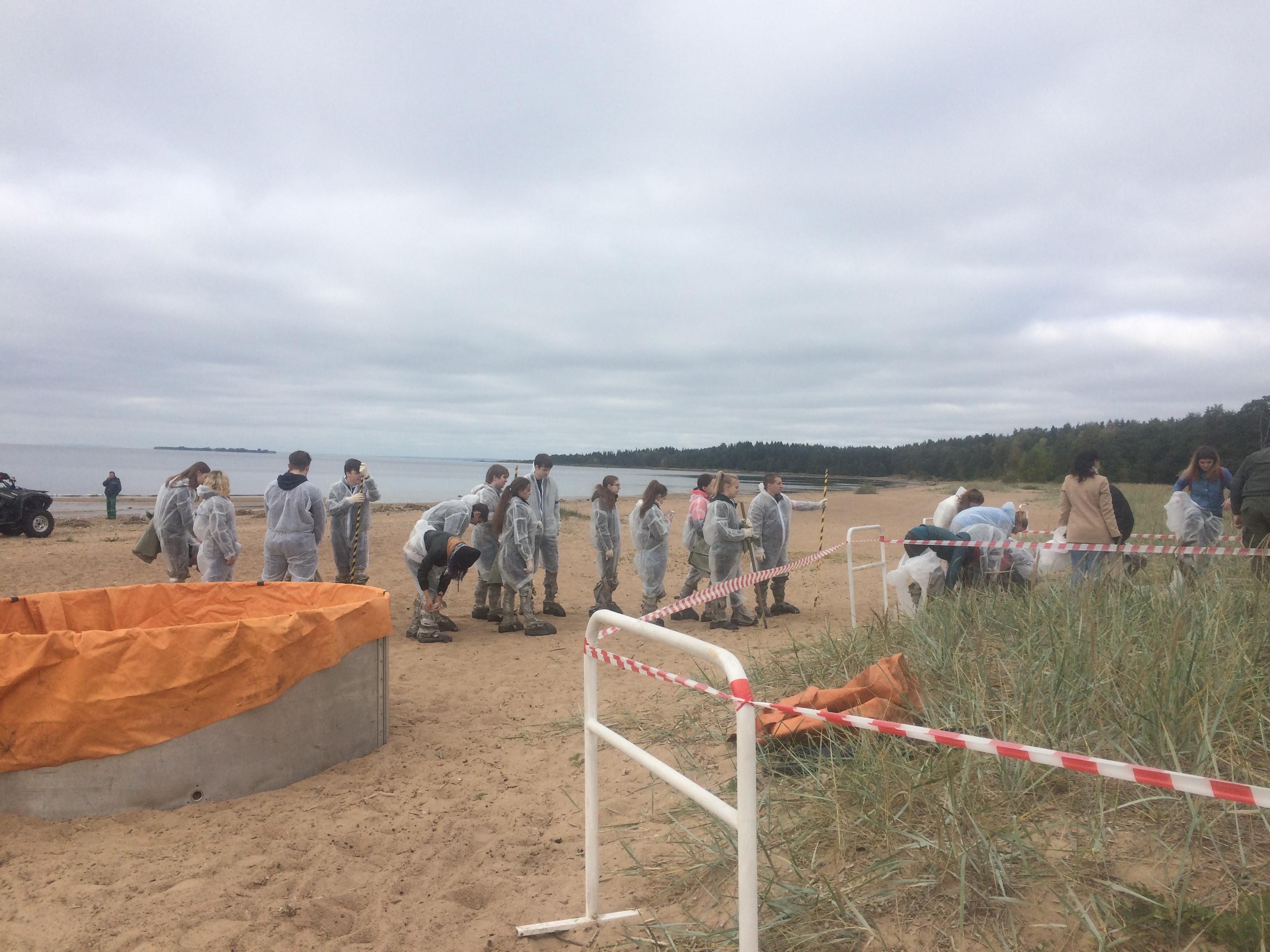 Тренировка волонтеров