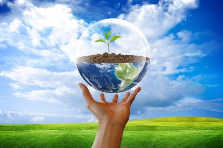 О прикладной подготовке по экологии и природопользованию