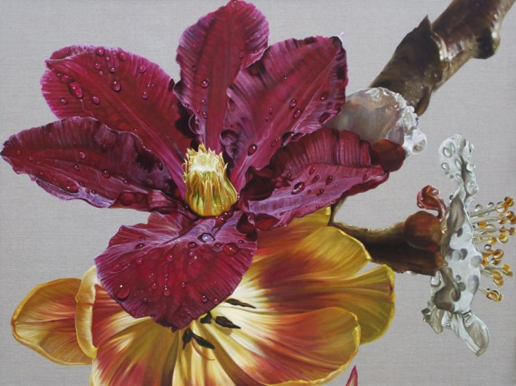 09_Clematis_Tulip_Blossom_2011